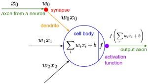 neuron_model